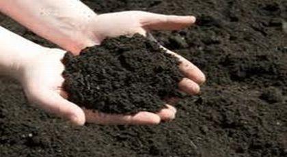 premium garden soil gold coast