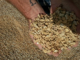 rolled sandstone Gravel