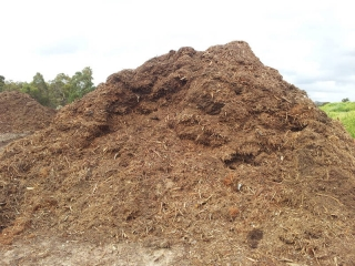 Bush Mulch Supplier Gold Coast